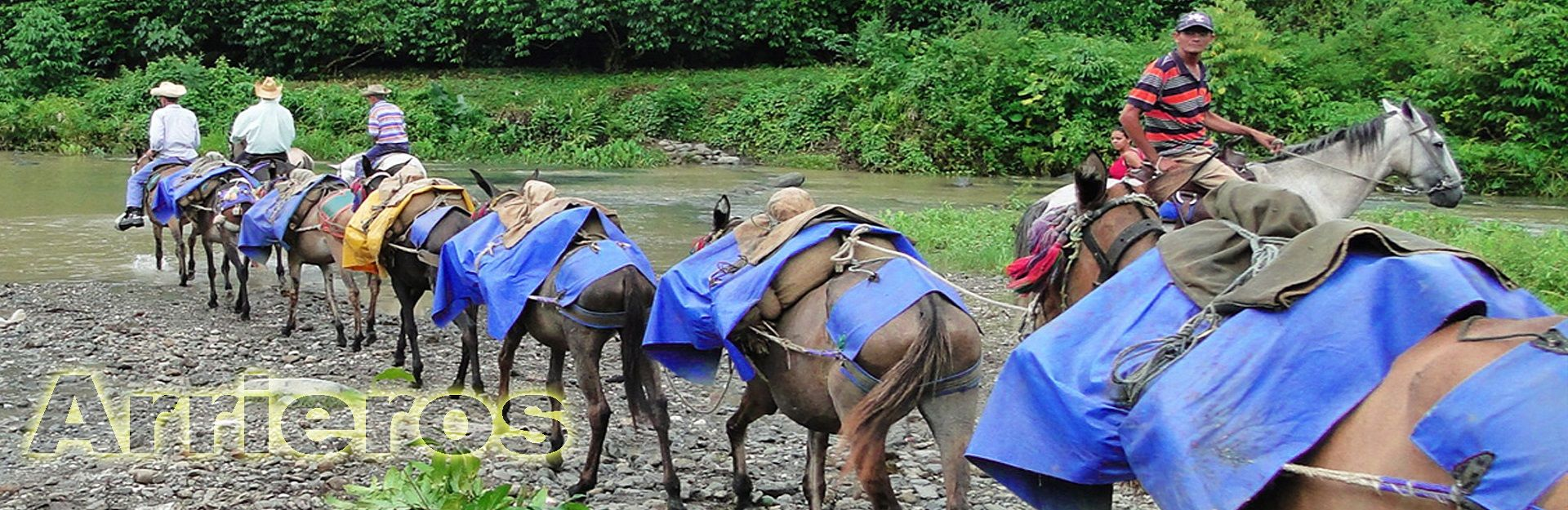 National Event Of Mule Drivers, Buey Arriba, Granma, Cuba Travel
