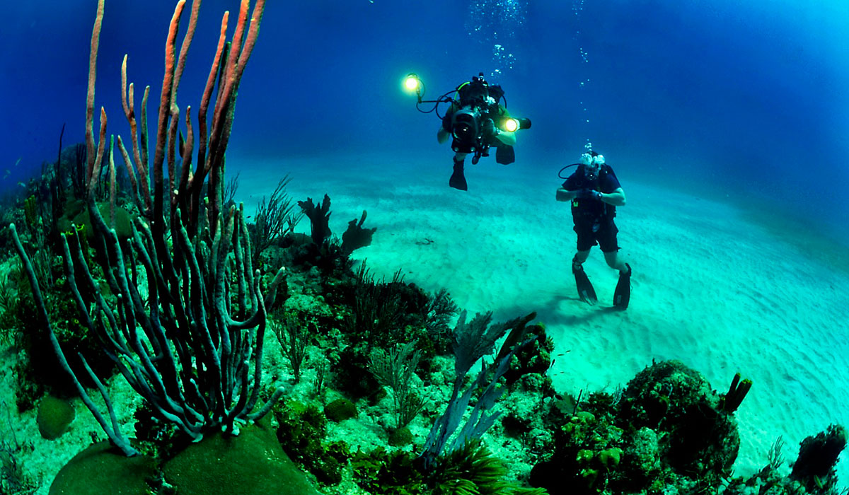 Diving in the coasts of Cuba a not-to-be-forgotten adventure.